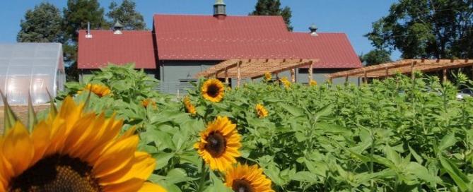 Bellair Farm Virginia