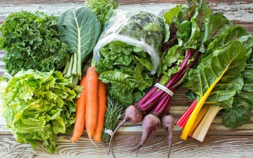 Real Food Campaign Grower Partner Program